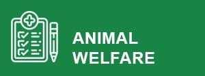 animal-welfare-button